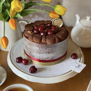 Вишнёво-шоколадный торт